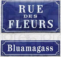 german language and alsace Classification: mixed language, german-yiddish-romani-rotwelsch comments: originated in germany, holland, switzerland, alsace (france), czechoslovakia.